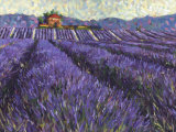 Lavender Fields I Prints by Lorraine Westwood