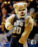 Brigham Young University Mascot Photo