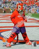 Clemson University Tigers Mascot Photo