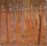 Bois de hêtres, 1903 Reproduction transférée sur toile par Gustav Klimt