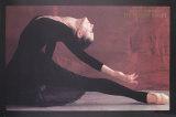Black Swan Sammlerdrucke von Harvey Edwards