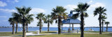 Shade and Palm Trees in a Park, Bayfront Park, Sarasota Bay, Sarasota, Florida, USA Photographic Print by  Panoramic Images