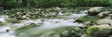 Little Pigeon River, Great Smoky Mountains National Park, Tennessee, USA Photographic Print by  Panoramic Images