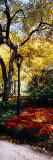 Lamppost in a Park, Central Park, Manhattan, New York City, New York, USA Photographic Print by  Panoramic Images