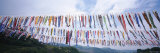 Carp Fish Streamers on a String, Japan Photographic Print by  Panoramic Images