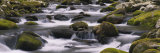 Rocks in a River, Great Smoky Mountains National Park, Tennessee, USA Photographic Print by  Panoramic Images