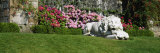 Lion Statue in a Garden, Torosay Castle, Isle of Mull, Scotland Photographic Print by  Panoramic Images