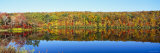 Reflection of Trees in Water, Lake Hamilton, Massachusetts, USA Photographic Print by  Panoramic Images