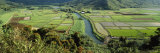 Rice Fields, Hanalei Valley, Hawaii, USA Photographic Print by Panoramic Images 