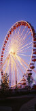 Ferris Wheel, Navy Pier Park, Chicago, Illinois, USA Photographic Print by Panoramic Images