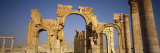 Old Ruins of Palmyra, Syria Photographic Print by  Panoramic Images