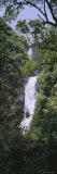 Tree in Front of a Waterfall, Moaula Falls, Halawa Valley, Molokai, Hawaii, USA Photographic Print by  Panoramic Images