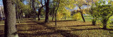 Fallen Leaves on a Footpath, St. Petersburg, Russia Photographic Print by  Panoramic Images