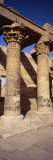Columns in Temple of Isis, Philae, Agilika Island, Egypt Photographic Print by  Panoramic Images