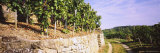 Gravel Road Passing Through Vineyards, Vaihingen an Der Enz, Baden-Wurttemberg, Germany Photographic Print by  Panoramic Images