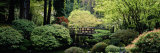 Garden, Japanese Garden, Washington Park, Portland, Oregon Photographic Print by  Panoramic Images