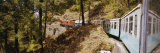 Toy Train Passing Through a Forest, Himachal Pradesh, India Photographic Print by  Panoramic Images