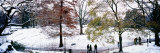 People in a Park, Central Park, Manhattan, New York City, New York, USA Photographic Print by Panoramic Images