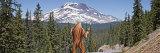 Sasquatch Hitchhiking, Oregon, USA Photographic Print by  Panoramic Images