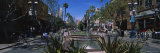 Trees Along a Street, Third Street Promenade, Santa Monica, California, USA Photographic Print by  Panoramic Images