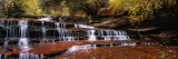 Waterfall in a Forest, North Creek, Zion National Park, Utah, USA Photographic Print by  Panoramic Images