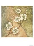Burlap Dogwood Blossom Posters af Tina Chaden