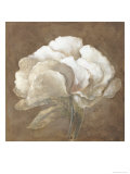 Tawny Peony Giclee Print by Rich Wilder
