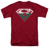 Superman - Welsh Shield T-shirts