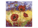 Ruby Red Poppies Giclee Print by Tina Chaden