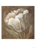 Tulip Giclee Print by Rich Wilder