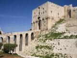 Aleppo Citadel, Syria Fotografie-Druck von Ivan Vdovin