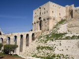 Aleppo Citadel, Syria Photographic Print by Ivan Vdovin