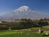 El Misti Volcano and Arequipa Town, Peru Photographic Print by Michele Falzone