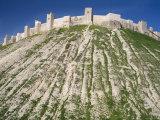 Aleppo Citadel, Syria Photographic Print by Ivan Vdovin