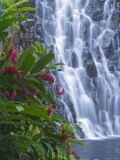 Kepirohi Waterfall, Pohnpei, Federated States of Micronesia Photographic Print by Michele Falzone