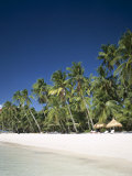 Boracay Beach, Palm Trees and Sand, Boracay Island, Philippines Photographic Print by Steve Vidler