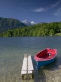 Ribcev Laz, Lake Bohinj, Gorenjska, Slovenia Photographic Print by Walter Bibikow