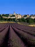 Village and Lavender Fields, Puimosson, Provence, France Photographic Print by Steve Vidler