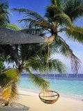 Maldives, Indian Ocean Fotodruck von Jon Arnold