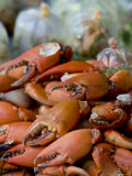 Crabs, Bangkok, Thailand Photographic Print by Russell Young