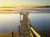 Catlin Coast, South Island, New Zealand Photographic Print by Peter Adams
