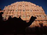 Palace of the Winds, Camel in Silouhette, Jaipur, Rajasthan, India Photographic Print by Steve Vidler