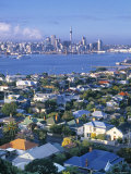 Devonport, Auckland, North Island, New Zealand Photographic Print by Doug Pearson