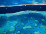 Great Barrier Reef, Whitsundy, Queensland, Australia Photographic Print by Steve Vidler