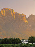 Boschendal Wine Estate, Franschoek, Cape Province, South Africa Photographic Print by Walter Bibikow