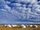 Yurts, Mongolia Photographic Print by Peter Adams