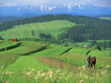 The Pienny, Carpathian Mountains, Poland Photographic Print by Peter Adams
