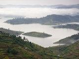 Lake Mburo National Park, Uganda, Africa Fotografie-Druck von Ivan Vdovin