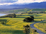 Kaikoura Peninsular, South Island, New Zealand Photographic Print by Doug Pearson