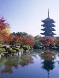 Toji Temple, Kyoto, Japan Photographic Print by Steve Vidler